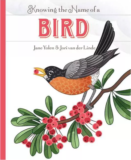 StoryWalk® June 2021 - Knowing the Name of a Bird