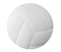 Photo of a Volleyball